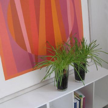 Orange billede med græs